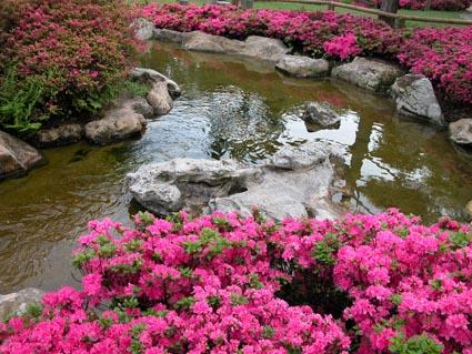 jap-Garten3