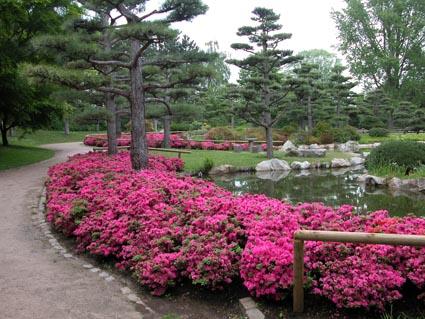 jap-Garten4