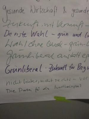 Sammlung von Wahlkampfsprüchen bei einer GLP Sitzung in Luzern