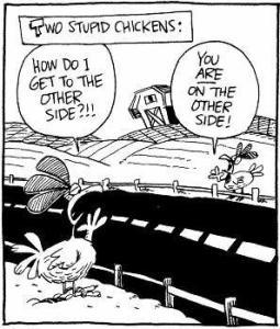 Chicken_FPOe