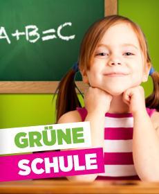 Gruene-Schule1