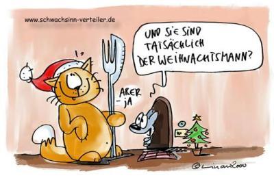 Weihnachts-Katze