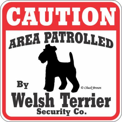 welsh-terrier-patrol