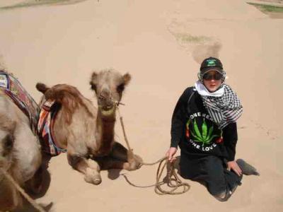 kamel4