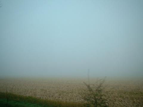 Lichter Nebel am Morgen