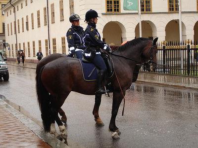 Schwedische Polizei mit Pferden.