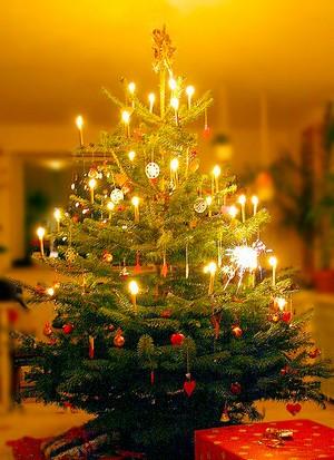 Weihnachtstree