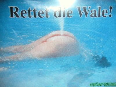 ficken online gratis geile deutsche frauen beim ficken