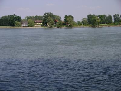 Der Rhein vor Mainz