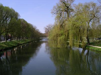 Donau bei Tuttlingen