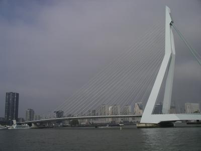Erasmusbruecke in Rotterdam