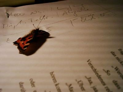 Besuch-auf-dem-Manuskript1