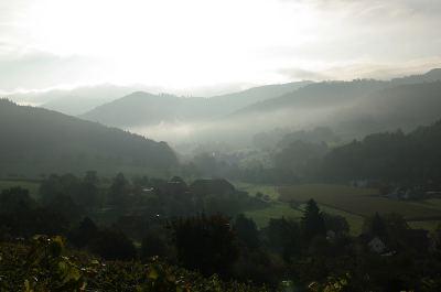 Nebel durch die Sonne