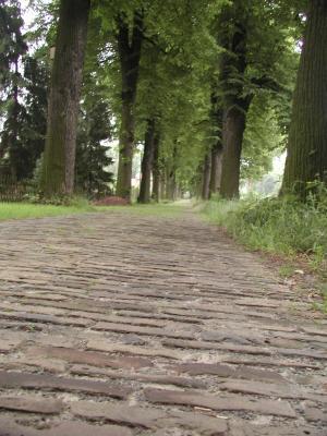 Der-Weg