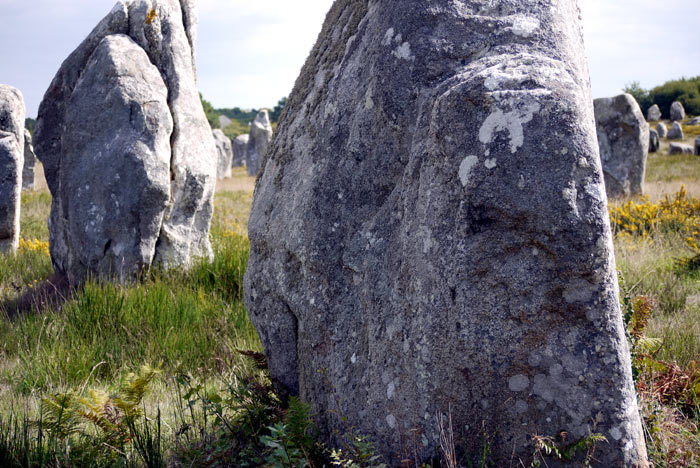 Steinzeit 10