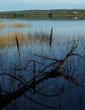 Der Saapunki See