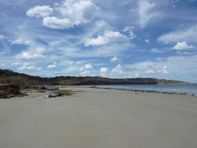 beachsmall