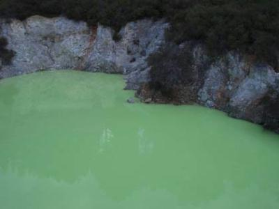 nz_greenlake