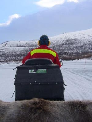 Die Fahrt mit dem Scooterschlitten über den Stora Sjöfallet