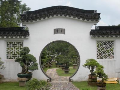 Chinese-garden3