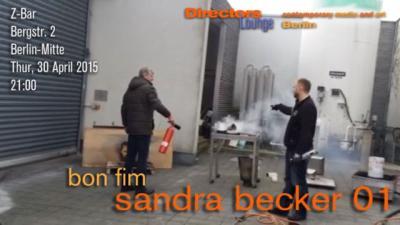 SandraFlyer
