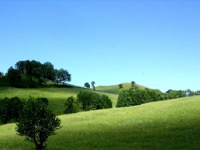 landschaft im hofnergraben