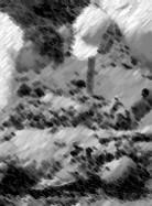exhumation srbrenica