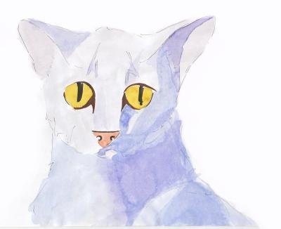 Katze-mit-Aquarellfarben-coloriert