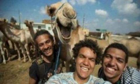 Kamel-selfie