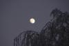 Mond über Albisreute