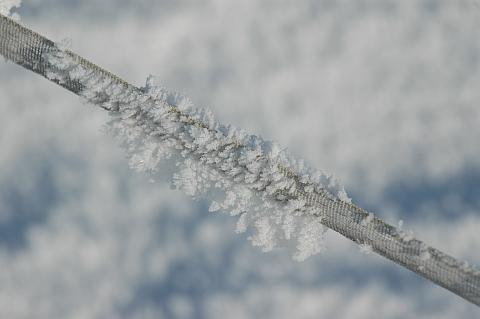 Draht im Frost