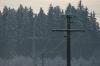 Stromleitungen schwer beladen