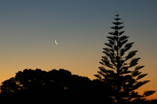Moon over New Plymouth