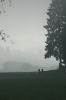 Dunst und Nebel