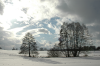 Schlier im Schnee