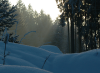 Sonnenstrahlen auf Schnee