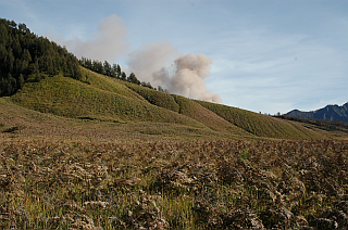 First glimpse on the ash plume of Bromo