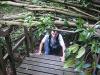 Treetop Crawl
