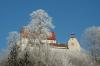 Waldburg im Sonnenschein