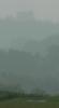 Waldburg im Regen