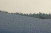 Winterbergle