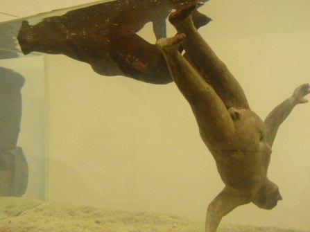 Aquarium-Robi-Mueller
