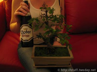 bonsai_ansatz
