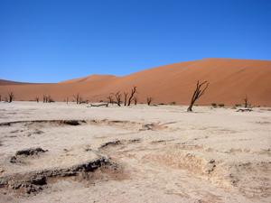 Das Deadvlei ist mitten in der Wüste Namib, ein salzüberkrustetes, unglaublich heißes Tal inmitten roter Dünen, in dem seit Hunderten von Jahren kein Leben eine Chance hat.