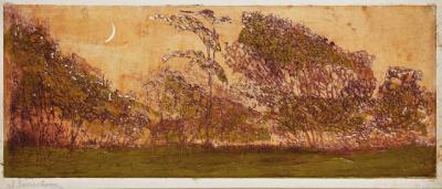Gerresheim_Mond-ueber_Buschgehoelz-1903-kl