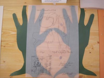 Feldbefreier Vitrine 1 Joseph Beuys 2011 Detail