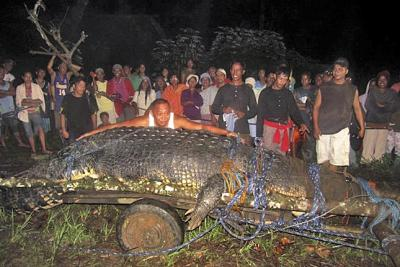 """Manila - Im Guinness-Buch der Rekorde galt bisher ein 5,48 Meter langes Leistenkrokodil (Crocodylus porosus) als größtes Krokodil der Welt - es ist um fast einen Meter kürzer als ein Exemplar der selben Art, das nun auf den Philippinen eingefangen wurde: Der nunmehrige Rekordhalter ist 6,40 Meter lang und über eine Tonne schwer. """"Es ist das größte Tier, mit dem ich in 20 Jahren Jagd bisher zu tun hatte"""", sagte der an dem Fang beteiligte Krokodiljäger Rollie Sumiller am Dienstag."""
