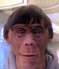 uvmann-ape