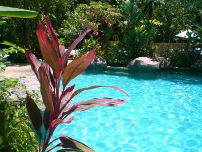 Tropischer Pool