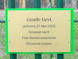 elisabethgehrer2009